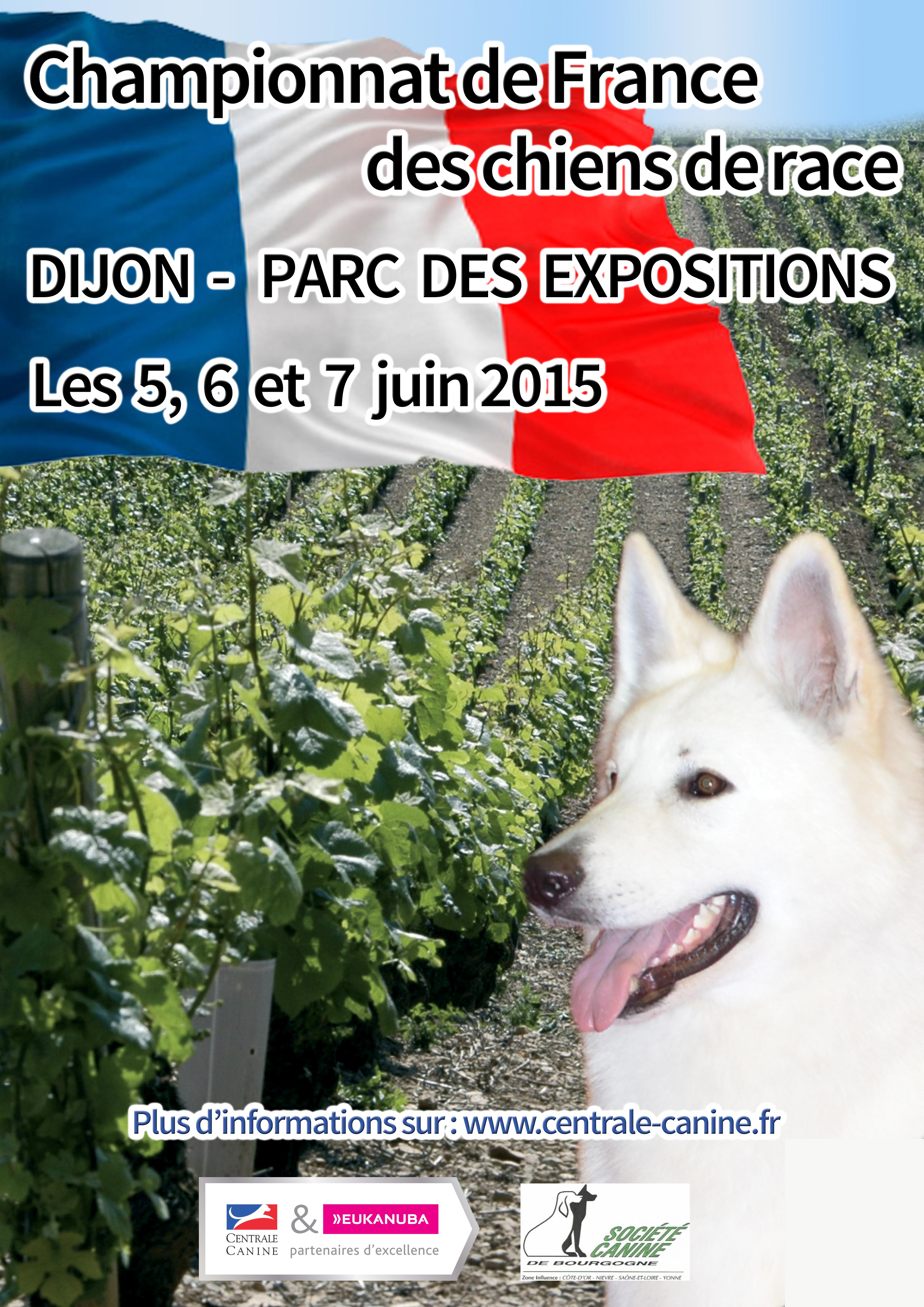 Affiche championnat de France 2015 V16