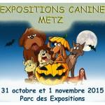 EXPO METZp